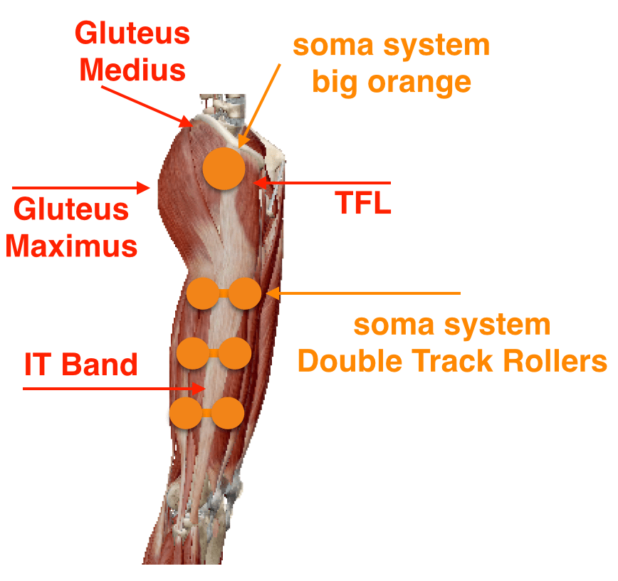 soma system® - it band and vastus lateralis release, Human Body