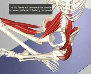 hip flexor stress sprinting